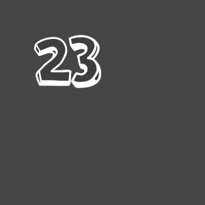 Door 23